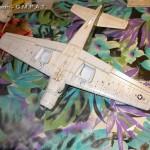 Skyraider Foto8