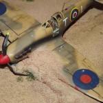 Spitfire Roberto Bianchin